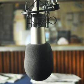 Entrevista en Radio Naval