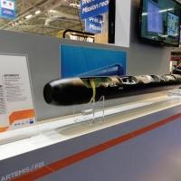 El Torpedo Francés F21