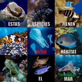 El Plástico en el Mar