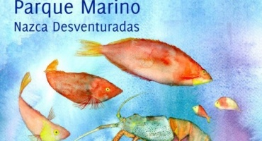 Sustentabilidad del océano: combate de la pesca ilegal y los parques marinos