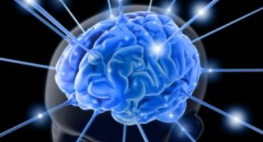 Breve cuestionamiento a la inteligencia humana