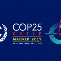Cambio climático y la COP25 Chile - Madrid: Un escenario complejo