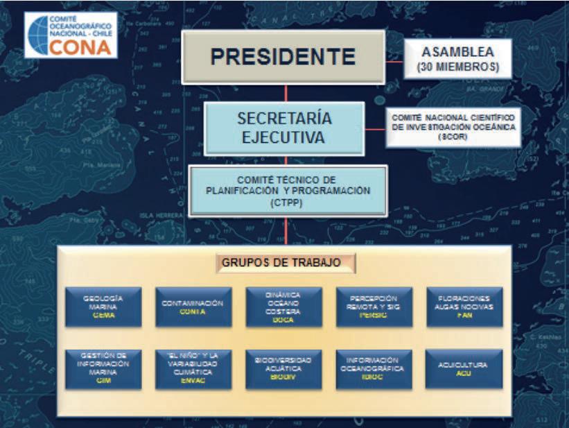 Organigrama del CONA.